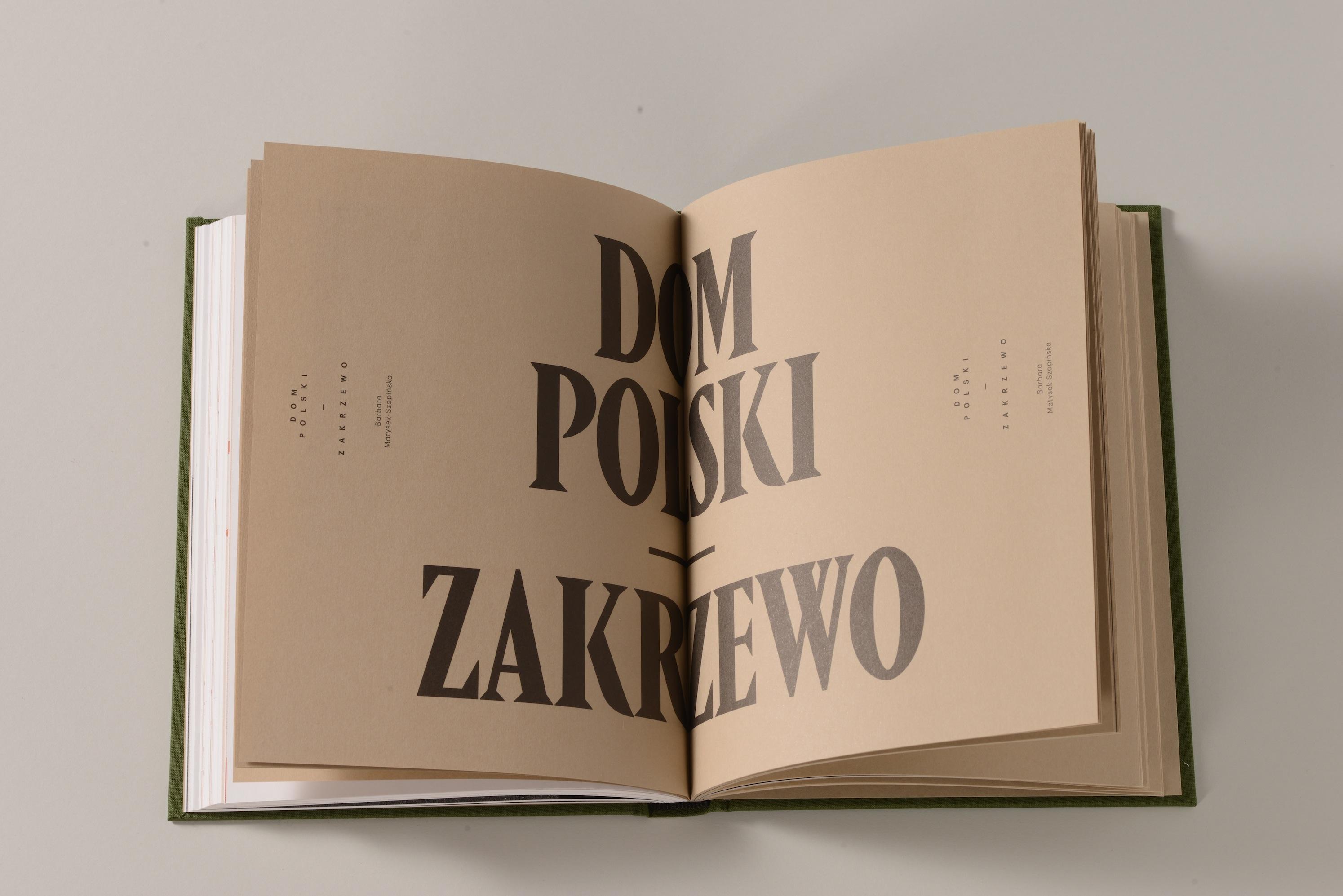 Dom WielkoPolski: Janina Kłopocka - Polichromie (2014')
